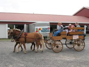 The Windmill Farm & Craft Market